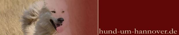 Hund-um-Hannover-Header